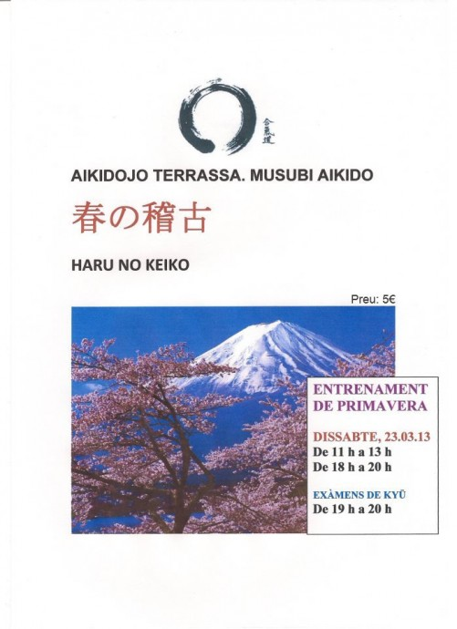 Curso aikido primavera 2013
